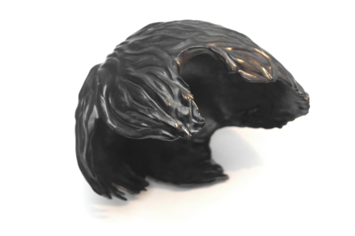 Coiffe noire.